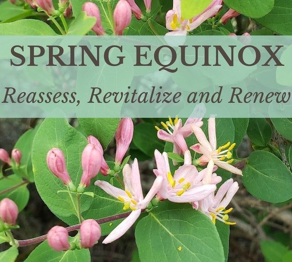 Spring Equinox: Reassess, Revitalize and Renew